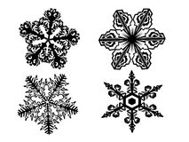Black snowflake. On transparent background Stock Images