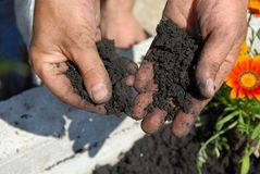 Black soil Royalty Free Stock Photography