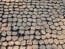 Black soil bag. For tree planting royalty free stock image