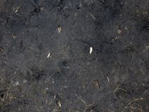Black Soil Dirt Background Texture, Natural Pattern. Ground, nature. Dirt texture. Soil or dirt texture. Black Soil Dirt Background Texture, Natural Pattern royalty free stock images