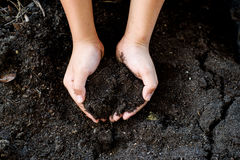 Black soil in hand. Close up Child hand carry black and organic soil stock photos
