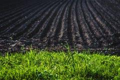 Black soil plowed field. Earth texture Stock Photos