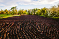 Black soil plowed field. Earth texture. Rustic background Royalty Free Stock Image