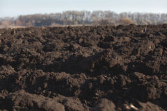 Black soil plowed field Stock Photography