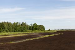 Black soil. In the territory where peat extraction is carried out, landscape royalty free stock photo