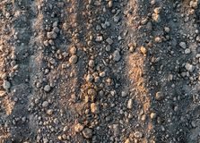 Black soil texture. Black soil ground as a texture royalty free stock images