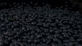Black soy beans of stack. Collection stock footage