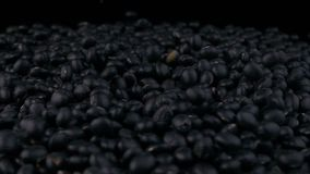 Black soy beans of stack. Collection stock video footage