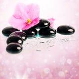 Black spa stenen en bloem op kleurrijke achtergrond Royalty-vrije Stock Foto
