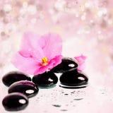 Black spa stenen en bloem op kleurrijke achtergrond Royalty-vrije Stock Foto's