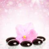 Black spa stenen en bloem op kleurrijke achtergrond Stock Afbeelding