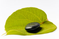 Black spa stone on a leaf Royalty Free Stock Photo