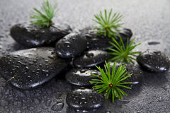 Black Spa Stones Royalty Free Stock Image