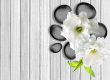 Black spa stones with flower on white wooden background. Black spa stones with flower on the white wooden background Stock Photo