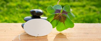 Black spa stones and four leaf clover . Royalty Free Stock Image