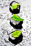 Black spa stones with green leafs. Black SPA stones with water drops and leafs Stock Photos