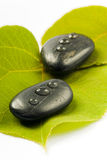 Black spa stones on a leaf. Black spa stones with drops on a green leaf on white ground Stock Image