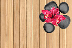 Black spa stones and pink orchid flower on wooden. Background Stock Image