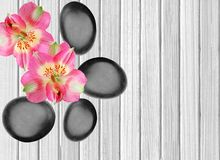 Black spa stones and pink orchid on white wooden. Background Royalty Free Stock Photos