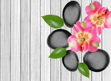 Black spa stones and pink orchid on white wooden. Background Royalty Free Stock Photo