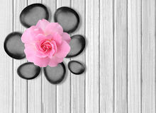 Black spa stones and pink rose on white wooden table Royalty Free Stock Image