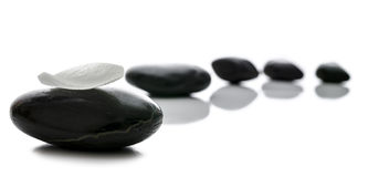 Black spa stones in a row. With white petal on the front one Stock Image