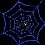 Black spider on blue web Royalty Free Stock Photography