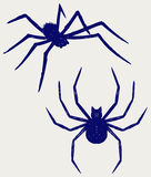 Black spider. Doodle style Stock Photos