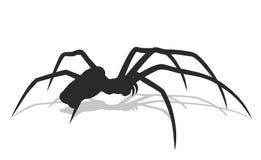 Black spider Royalty Free Stock Photos