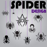 Black Spider Royalty Free Stock Photos