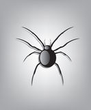 Black spider illustration Royalty Free Stock Images