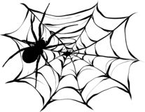 Black spider and torn web. Scary spiderweb of halloween symbol. Isolated on white illustration vector illustration