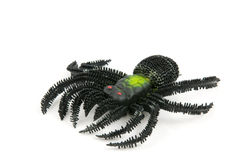 Black spider toy Stock Photo