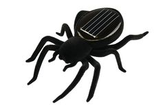 Black spider toy for kids Royalty Free Stock Image