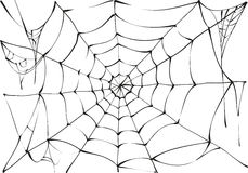 Black spider web on white background Royalty Free Stock Photography