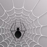 Black spider web Royalty Free Stock Photo