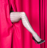 Black spotted tights on a womans leg appearing through a red curtain Royalty Free Stock Photography