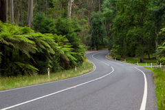 The Black Spur Royalty Free Stock Photo