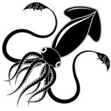 Black squid. Black and white vector illustration of a squid royalty free illustration
