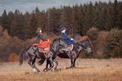 The black stallion Royalty Free Stock Photo