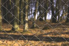 Black Steel Fence With Tree Trunks Royalty Free Stock Photo