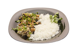 black stekte musslor plate rice royaltyfria foton