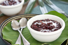 Black sticky rice with coconut milk [Thai dessert Royalty Free Stock Photos