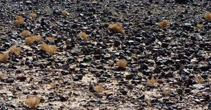 Black stone field in the desert Stock Photography