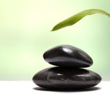 Black stone with leaf Royalty Free Stock Photos