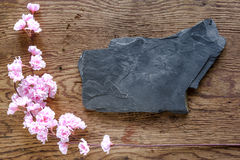 Black stone and pink flowers on wooden background Stock Photography