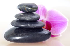 Free Black Stones Stock Images - 23881624