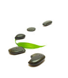 Black stones and bamboo leaf on white Stock Images