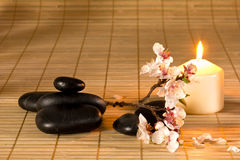 Black stones, candle and flower branch. Stock Image