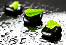 Black stones with green leafs. Black SPA stones with water drops and leafs Royalty Free Stock Image